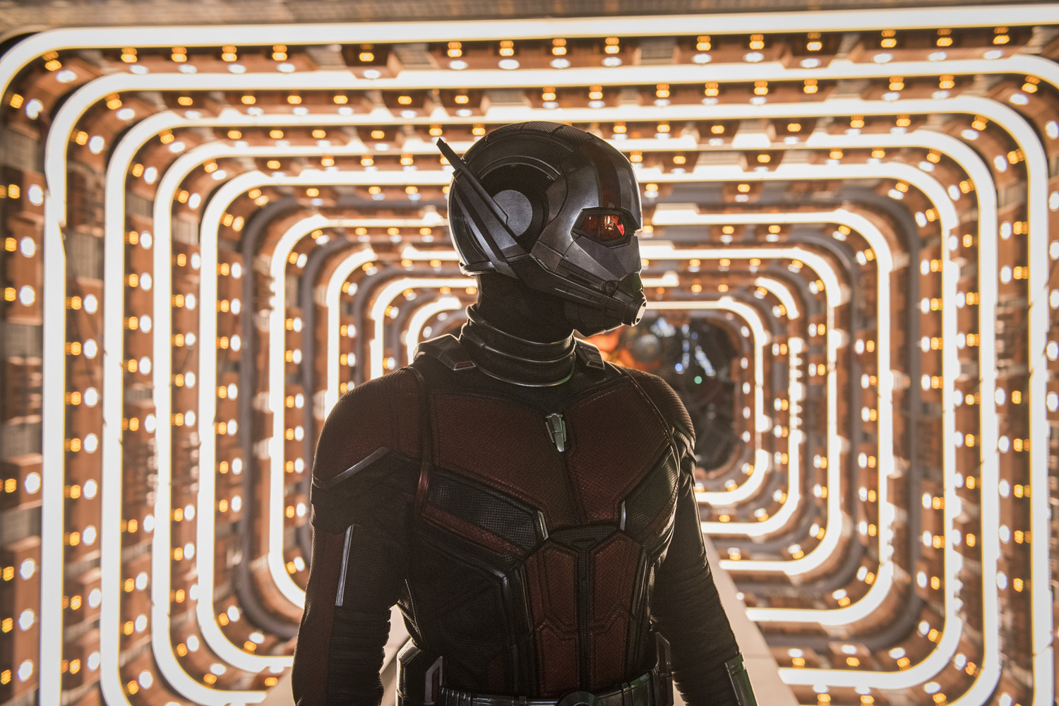 Download Ant man and the wasp ( ) Mp4 Full Movie ...