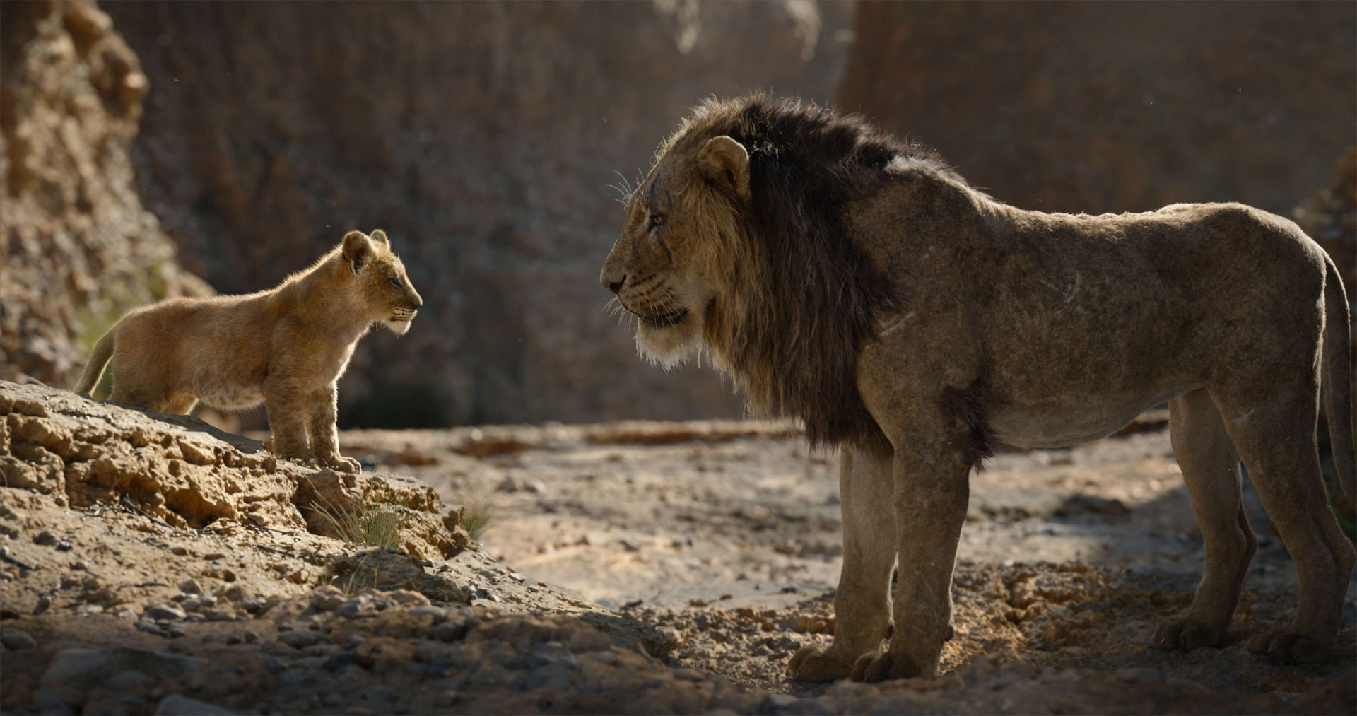 The Lion King 2019 Review Emotional Range Takes A Backseat
